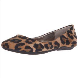 NWOB Steve Madden leopard ballet flat